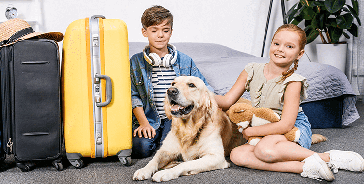 רילוקיישן עם כלב