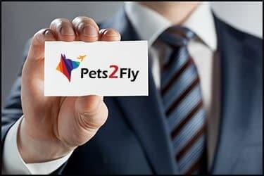 פטס2פליי חברה להטסת חיות