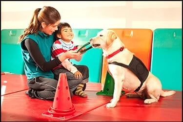 כלב לתמיכה נפשית עוזר ליד הקטן הנדרש לטיפול. מטפלת מחזיקה בילד