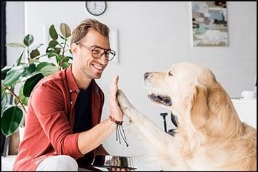 כלב גולדן רטריבר בצבע בז' נותן כיף לאדם מאושר