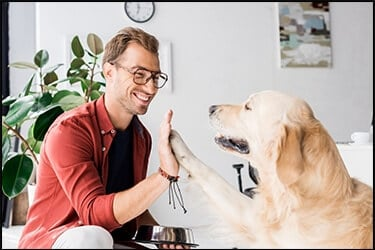 Golden Retriever dog gives five to a happy guy with glasses