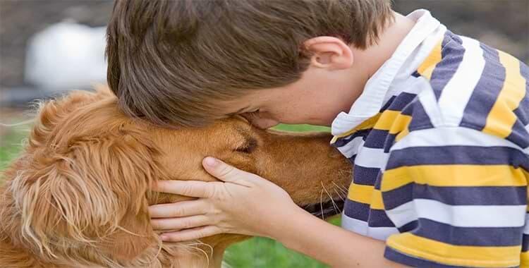 ילד שם את הראש על הכלב שלו
