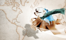 A dog flying in a plane made out of cardboard. The dog is wearing a blue blanket, a green scarf and sunglasses. The background is a brownish/white map of the world.