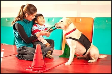 Therapy dog with his kid owner and trainer